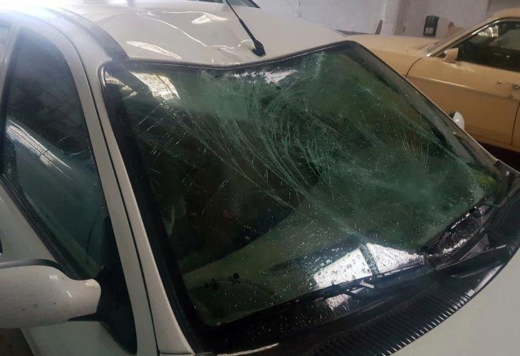 Un Ciervo Genera Otro Nuevo Accidente En La N 631 Entre Pozuelo Y Tábara