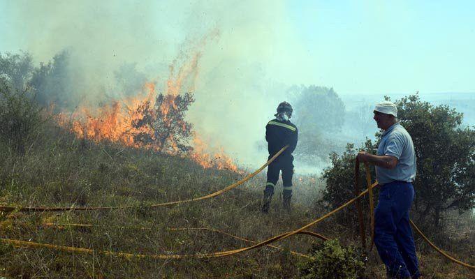 Unión de Castilla y León y Madrid en la gestión contra incendios ...